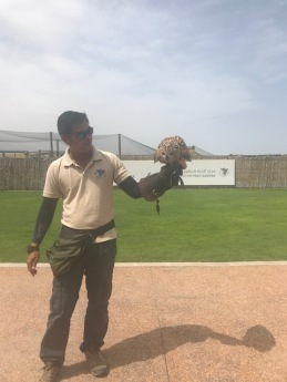 Kalba Bird of Prey Centre